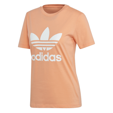 adidas Originals TREFOIL TEE CHACOR